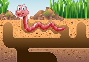 Earthworm Vector Wallpaper