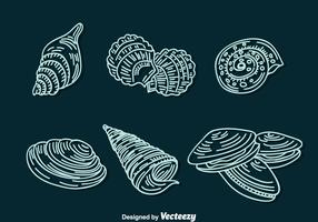 Shell Line Icons Vector