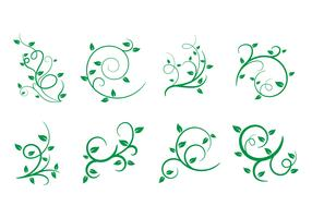 Free Liana, Leaves, Vector Illustration