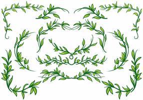 Free Liana Plant Border Vector