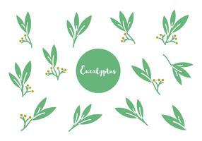 Free Eucalyptus Icon Vector