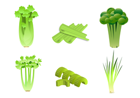 Free Celery Vector