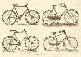 Vintage Vector Bicycles