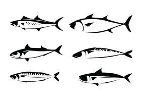 Mackerel Vectors