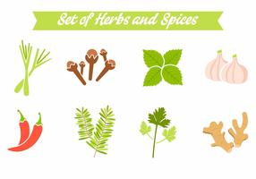 Free Spices and Herbs Vector