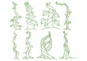 Free Beanstalk Illustration Vector