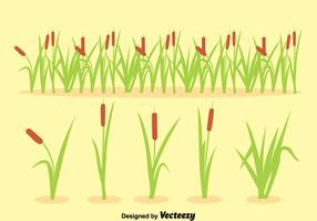 Reeds Collection Vector