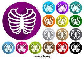 Rib Cage Icon Colorful Buttons Vector Set