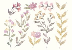 Vector Watercolor Floral Elements