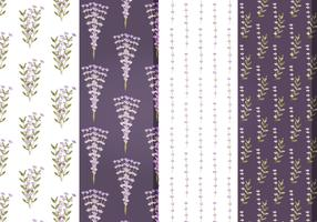 Vector Lavender Floral Patterns
