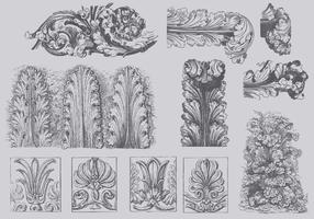 Vintage Acanthus Illustrations