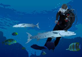 Swimming With Barracuda Vector