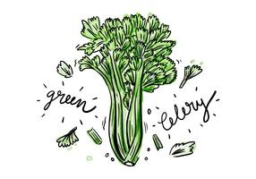 Free Celery Watercolor Vector