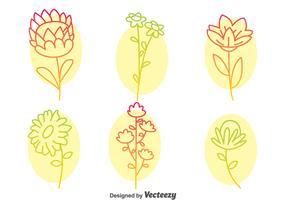 Flowers Collection Line Icons Vector