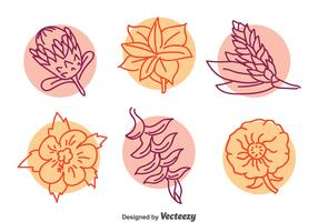 Exotic Flower LIne Vector Set