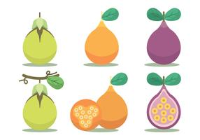 Passion Fruit Vector Set