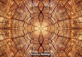 Realistic Tree Rings Close Up Background