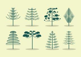 Free Araucaria Tree Vector
