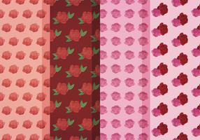 Vector Roses Patterns