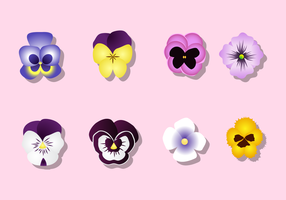 Free Pansy Vector