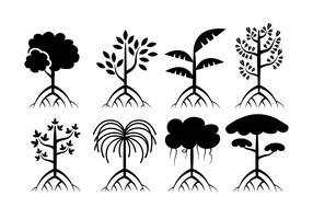 Mangrove trees vector