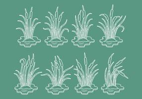 Cattail Vector Icons