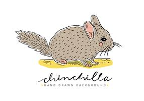 Free Chinchilla Background