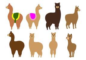 Free Alpaca or Llama Vector
