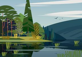 Swamp Landscape