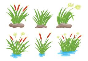 Free Reeds Icons Vector