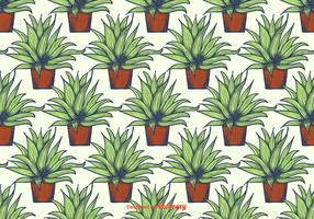 Maguey Pattern