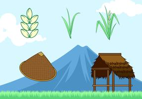 Rice Field Free Vector