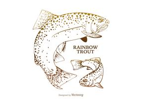 Free Rainbow Trout Vector Illustration