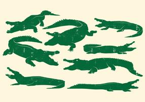 Crocodile Design Vector Set