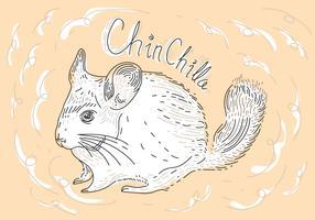 Free Chinchilla Vector Illustration