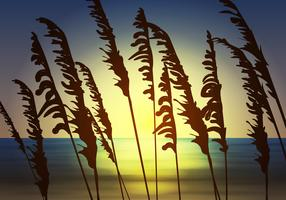 Sea Oats View