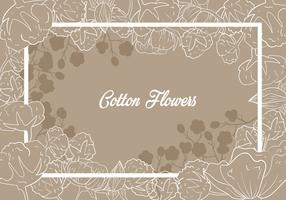 Cotton Flower Illustration