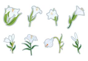 Free White Easter Lilies Vector