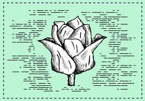 Free Hand Drawn Flower Background