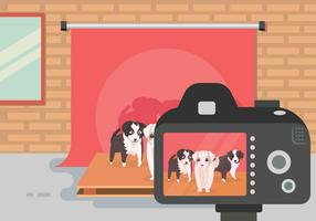 Free Border Collie Illustration