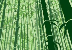 Bamboo Background Frog Angle Free Vector