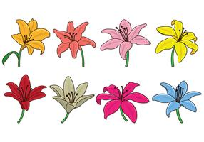 Set Of Easter Lily Vectors