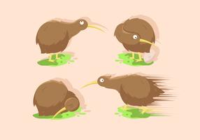 Kiwi Bird Vector Illustration Sets