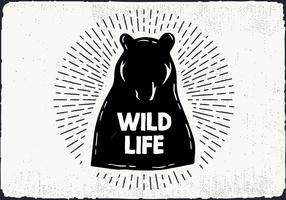 Free Hand Drawn Wild Life Background