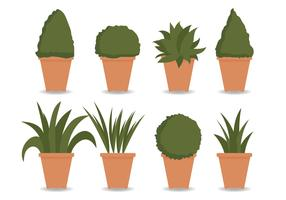 Planter Vector