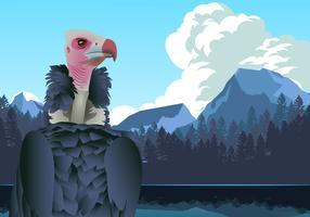 Andean Condor in Mountains Vector
