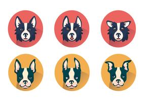Border Collie Vector Set