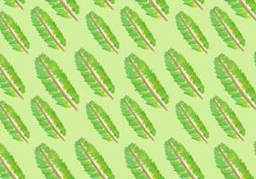 Watercolor Banana Leaf Vectors