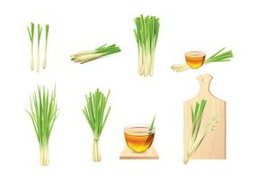 Lemongrass Vector Elements