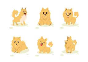 Pomeranian Dog Character Pose Vector